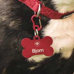 Pet Shop, Pet Supplies and Pet Accessories Online